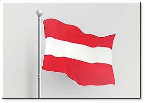 Imán para nevera, diseño de la bandera de Austria: Amazon.es: Hogar