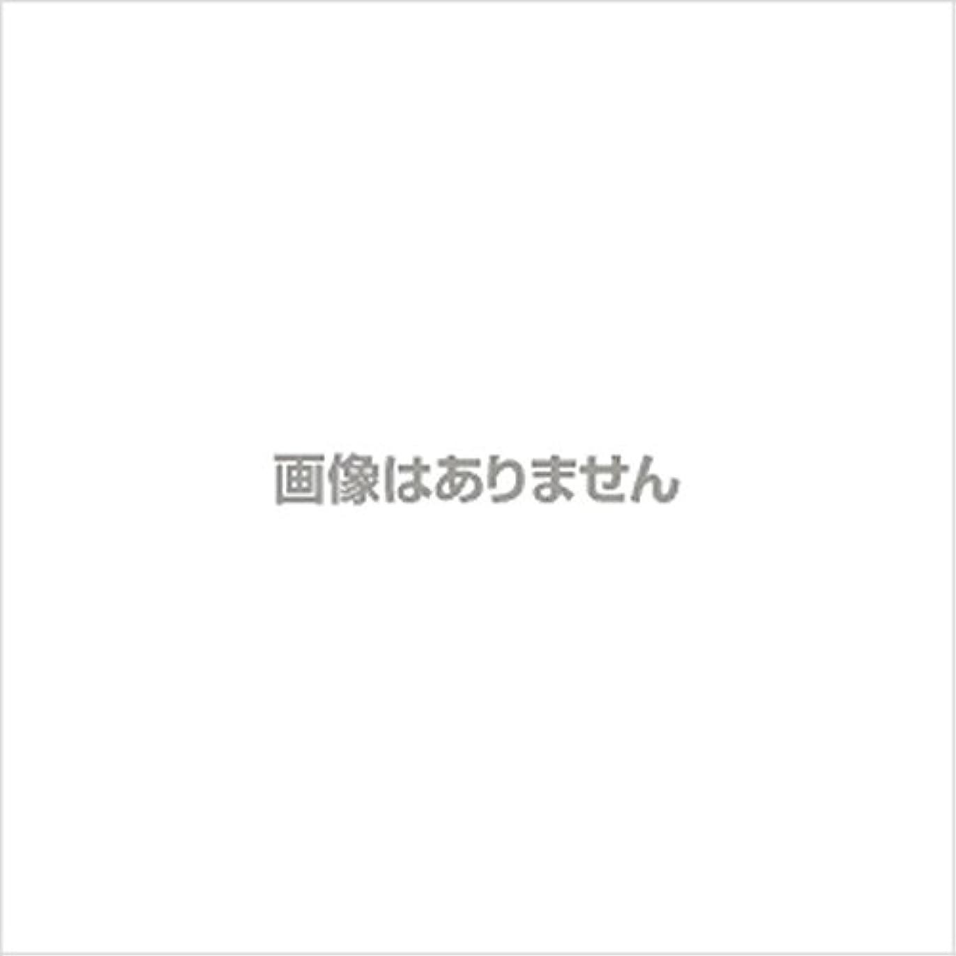 クロールめったに贈り物新発売】EBUKEA エブケアNO1004 プラスチックグローブ(パウダーフリー?粉なし)Mサイズ 100枚入(極薄?半透明)