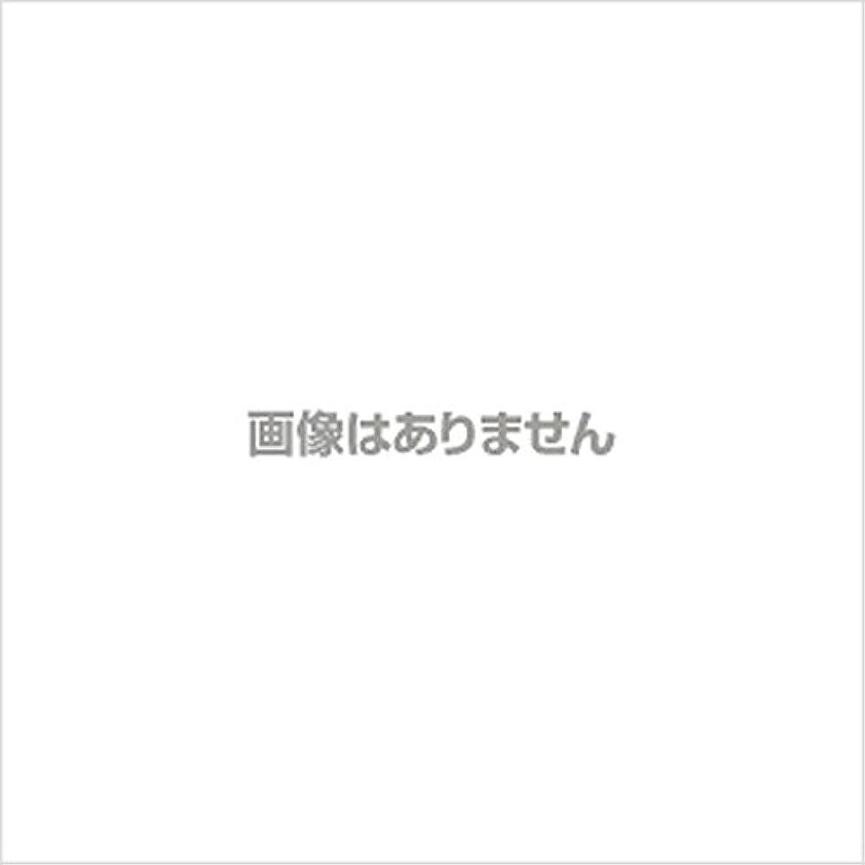ラジエーター皮肉なマージ【新発売】EBUKEA エブケアNO1004 プラスチックグローブ(パウダーフリー?粉なし)Sサイズ 100枚入(極薄?半透明)