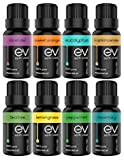 Earth Vibes Aromatherapy Top 8 Essential Oils Set - 100% Pure, Natural & Therapeutic Grade - Lavender/Frankincense/Eucalyptus/Peppermint/Tea Tree/Rosemary/Orange/Lemongrass - Oil Gift Kit For Diffuser