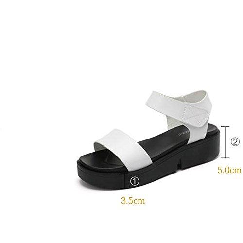 CHANCLAS SANDALS 5 cm Sandalias planas de verano de mujer Sandalias simples de estudiante Sandalias de playa (Negro / Blanco) elegante ( Color : Blanco , Tamaño : EU39/UK6.5/CN40 ) Blanco
