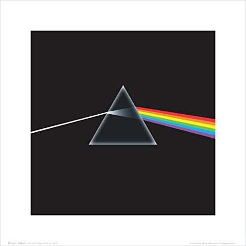 Pink Floyd Dark Side of the Moon Album Cover Psychedelic Classic Rock Music Poster Print 16 by 16