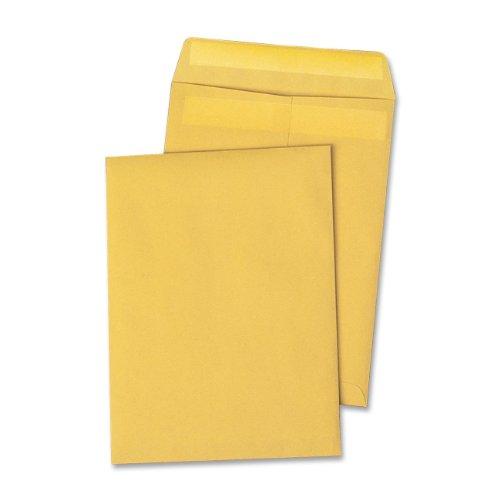 Quality Park Large Format Catalog Envelopes  Brown Kraft  Redi Seal  10 X 13 Inches  Box Of 250  Qua43762