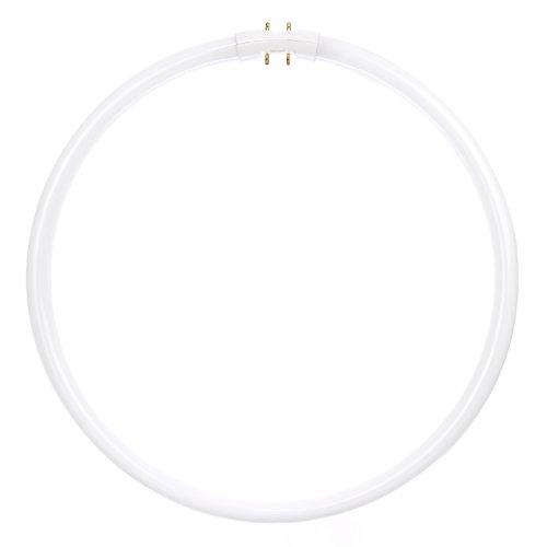 Sunlite FC40T5/SP835 Fluorescent 40W T5 Circline Ceiling ...