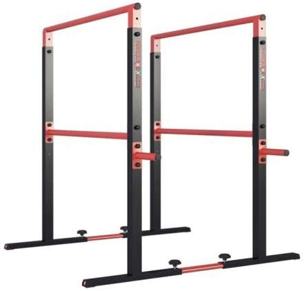 QLS Dip Station de Musculation pour barrins 275 kg