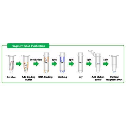 DNA Gel Purification Kit_50 Samples for Kit