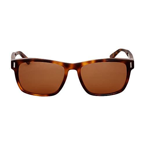 Calvin Klein Plastic Frame Brown Lens Ladies Sunglasses LCK8548S5717218 Calvin Klein Plastic Frames