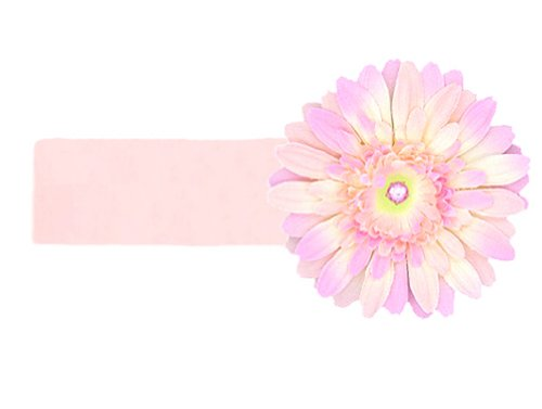 Jamie Rae Hats Baby Girl's Flower Headband- Pale Pink with Pale Pink Daisy 0-12m (Hats Rae Headband Jamie)