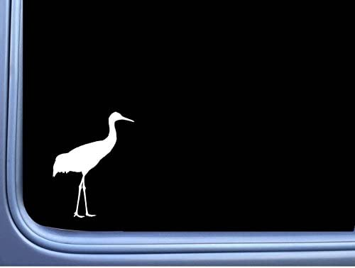 Amazon Sandhill Crane L966 8 Sticker Decal Bird Watcher Heron Farm Pond Automotive