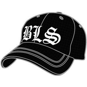 5a5ad22bb52 Rockabilia Black Label Society Baseball Cap Fitted