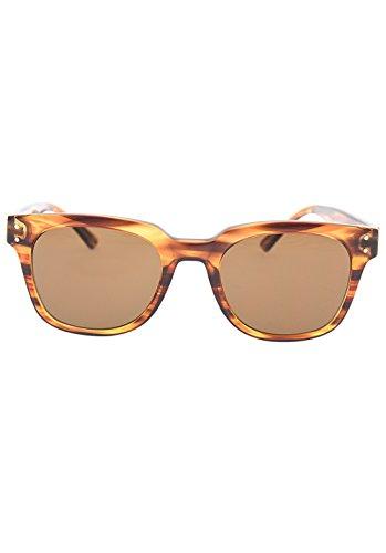 sol Shiny Brown Mujer Havana para Roxy Brown Rita de ERJEY03026 Gafas fqnxztP