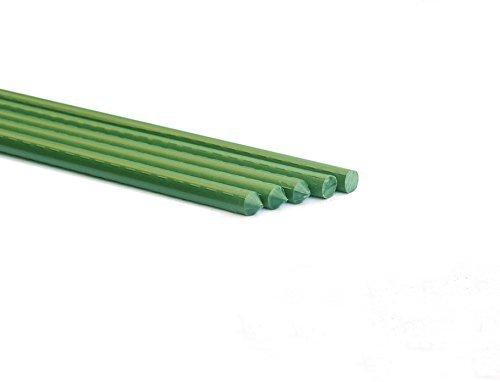 Allfenz 10 Piece Polyethylene Coated Garden Stakes, 6' L