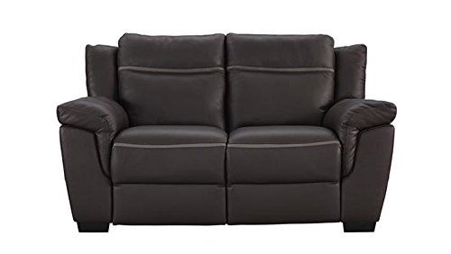 Natuzzi Editions Amalfi Brown Leather Power Motion Reclining Loveseat (Natuzzi Italian Leather Furniture)