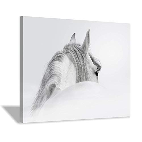 Animal Horse Canvas Wall Art: Mystical White Horse Back Giclee Printing Artwork for Living Room Kids Room (24