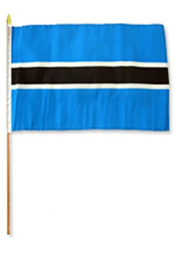 ALBATROS 12 inch x 18 inch (Pack of 12) Botswana Stick Flag with Wood Staff for Home and Parades, Official Party, All Weather Indoors Outdoors