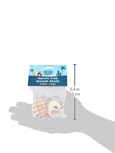 Picture of Flukers Hermit Crab Growth Shells, Large, 2-Pack