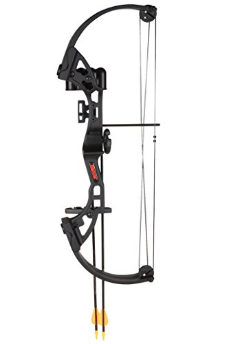 "Bear Archery Brave Black W/Biscuit Rh ""Product Category: ..."