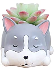 Succulent Plants Pot Animal Lovely Dog Plants Flower Pot Cactus Bonsai Container with Hole Desk Table