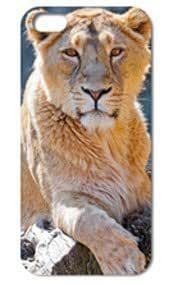 Fashion The Lion Pattern Protective Hard Case Cover For iPhone 5 5S #059