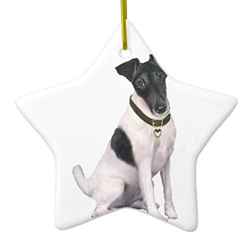 Moira Christmas Ornaments, Fox Terrier (a) - Smooth - Black-White Star Ceramic Christmas Ornaments Christmas Tree Decoration, Keepsake, Couples