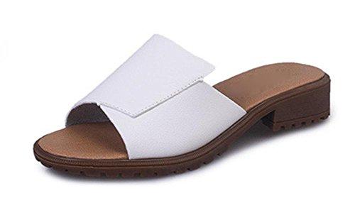 Inicio de primavera y el verano grueso con zapatos de plataforma de tacón bajo arrastran la palabra sandalias de deslizamiento casual y zapatillas las mujeres White