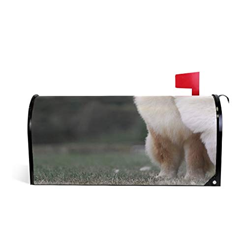 Friendly PVC Magnetic Mailbox Cover,Chow-Chow White Puppy Mail Box Makeover Waterproof Anti Sunburn Decor Standard Size