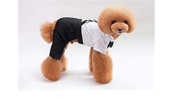 PZSSXDZW Vestido de Traje de Mascota Perro Caballero Vestido de ...