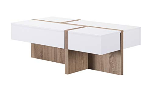 HOMES: Inside + Out IDI-172069CT Oana Coffee Table, White/Brown