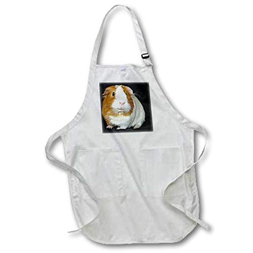 3dRose apr/_1061/_2 Guinea Pig Medium Length Apron with Pouch Pockets 22 by 24-Inch