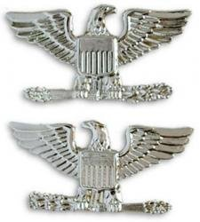 Air Force / Army Colonel Collar Device Rank Insignia Pair