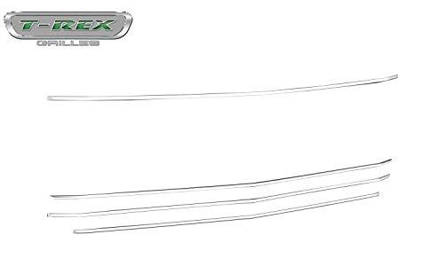 (T-Rex 6211236 Billet Grille, Horizontal Round, Silver Powder Coat Finish)