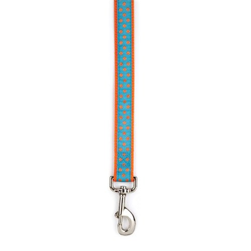East Side Collection Nylon Polka Dot Dog Lead, 6-Feet, Orange, My Pet Supplies