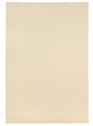 School Smart Jumbo Manila Tag Ruled Chart Paper, 36