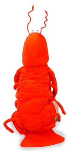 SMALL – LOBSTER PAWS – Dog Halloween Costume, My Pet Supplies