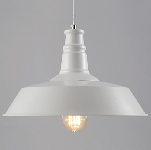 BAYCHEER HL371755 Industrial Wrought Pendant product image
