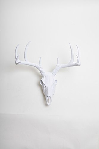 Deer Skull Wall Mount in White By White Faux Taxidermy | White Resin Animal Skull Mount Wall Hanging - Fake Animal Skull Animal - Skull Resin