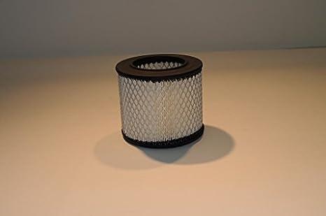 Compresor de aire servicios acs-1619126900 Atlas Copco Filtro de aire de repuesto: Amazon.es: Amazon.es