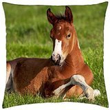 Painted Foal - Throw Pillow Cover Case (18 ()