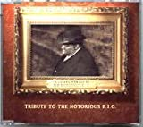 I'll Be Missing You (Tribute To The Notorious B.I.G.) [CD-Single, 3 Tracks, incl. We'll Always Love Big Poppa & Cry On]