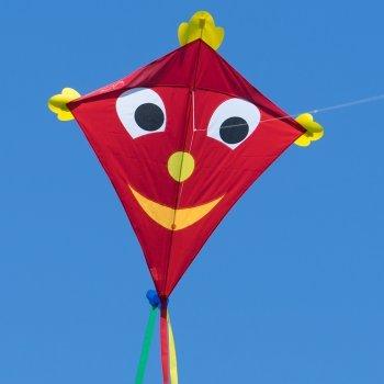 CIM Gran cometa - SUPERCOMETA Happy Eddy XL - Cometa para niños mayores de 6 años - 102 x 108 cm - Incluye hilo de cometa de 80 m y colas a rayas Colours in Motion