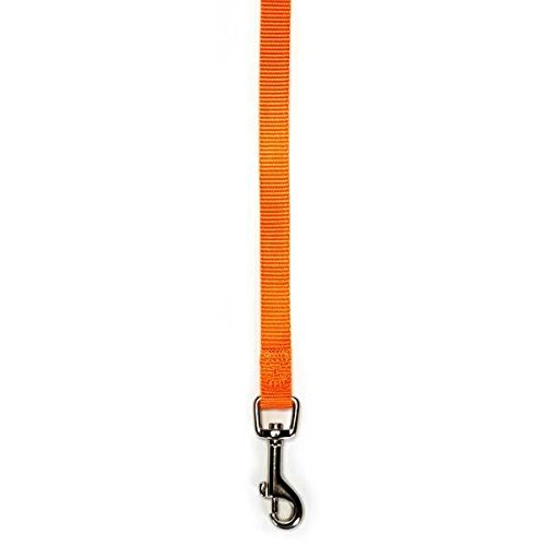 Zack & Zoey Dog Lead LEASHES Bulk LOT Packs Litter Rescue Shelter - Choose Size & Quantity (Small - 4 Ft x 5/8 Inch 40 Leads) by Zack & Zoey (Image #4)