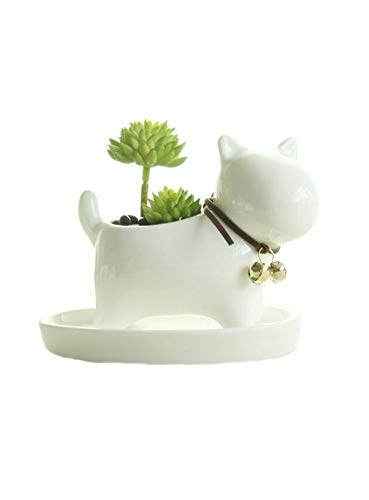 Small Lovely White Ceramic Succulent Plant Flower Pot with Tray, Modern Simple Style Neck with Bell - Dog