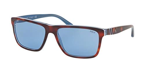 Ralph Lauren POLO 0PH4153 Gafas de sol, Top Havana Trasp ...