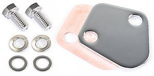 - JEGS 50582 Chrome Fuel Pump Block-Off Plate
