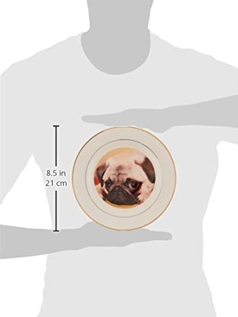 8-Inch 3dRose cp/_3644/_1 Pug Porcelain Plate