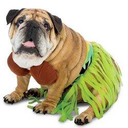 Pet Hula Costume (Rasta Imposta,Zelda Zelda Hula Dog Costume)