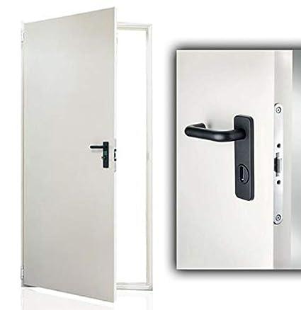 Puerta fabricada en chapa de acero galvanizado - Barnizada - Reversible - Todas las medidas: Amazon.es: Bricolaje y herramientas