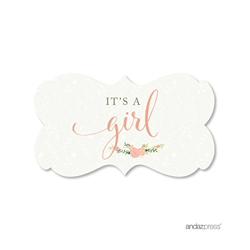 Andaz Press Floral Roses Girl Baby Shower Collection, Fancy Frame Label Stickers, It's a Girl!, 36-Pack