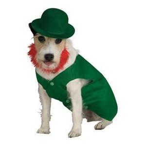 Irish Leprechaun Pet Costume
