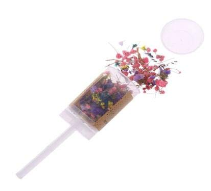 Party Diy Decorations - Confetti Push Pop Dried Flower Bridesmaid Shooters Wedding Birthday Party Favors Decor - Decorations Party Party Decorations Popper Ball Doll Push Container Heart Dinosa ()